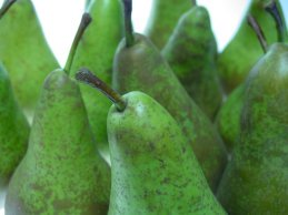 fresh green pears